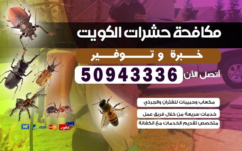 مكافحة حشرات وقوارض 50943336 في الكويت جميع المناطق