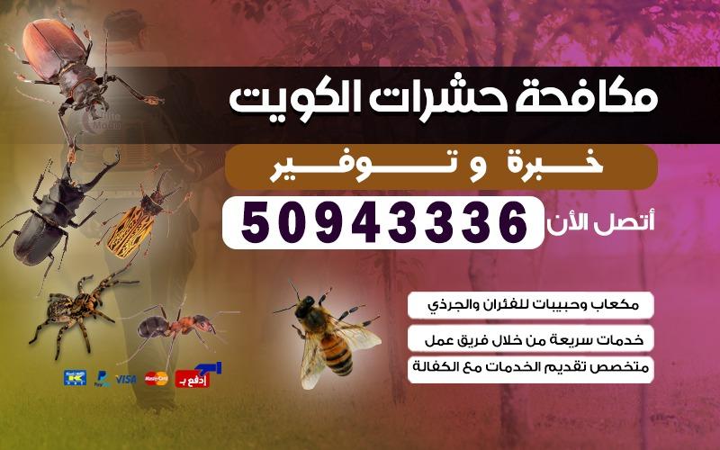 مكافحة حشرات وقوارض الاحمدي 50943336 الكويت