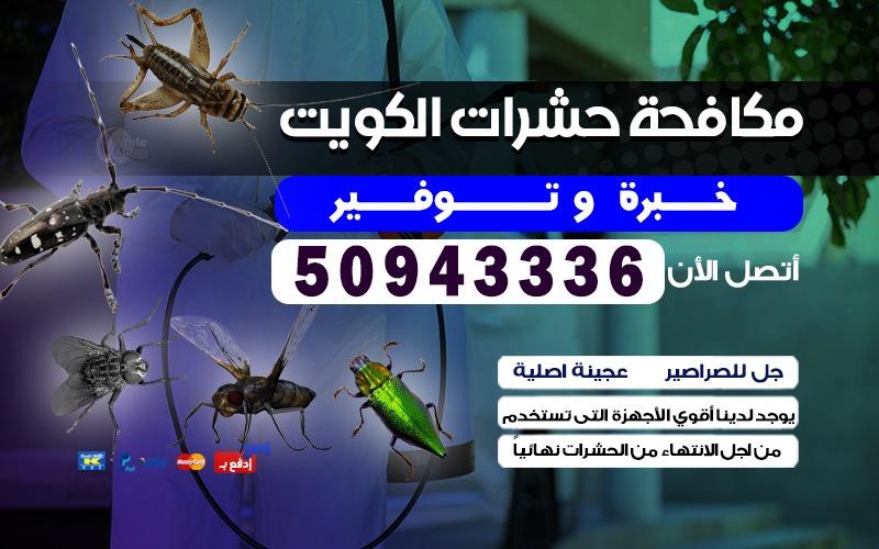 شركة مكافحة صراصير بالكويت