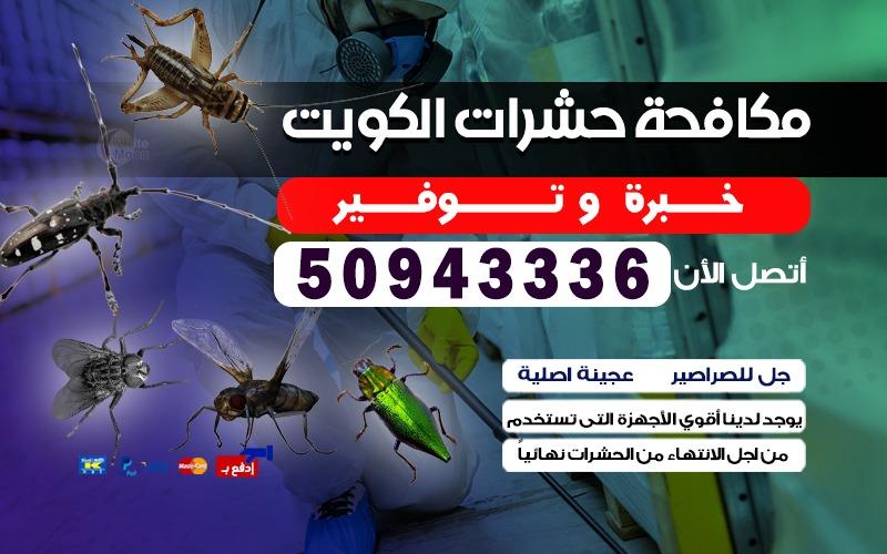 مكافحة الحشرات الجابرية 50943336 بالكويت