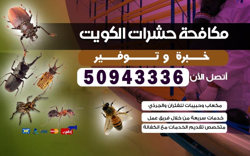 شركة مكافحة حشرات الصليبيخات 50943336 قوارض حشرات الكويت