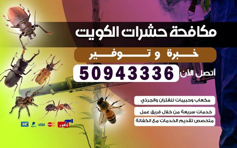 مكافحة حشرات سلوى 50943336 بالكويت