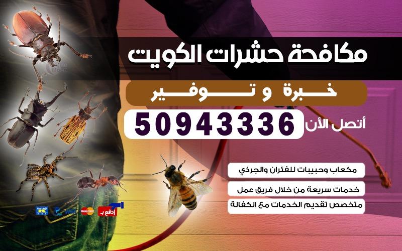 مكافحة حشرات الدعيه 50943336 الكويت
