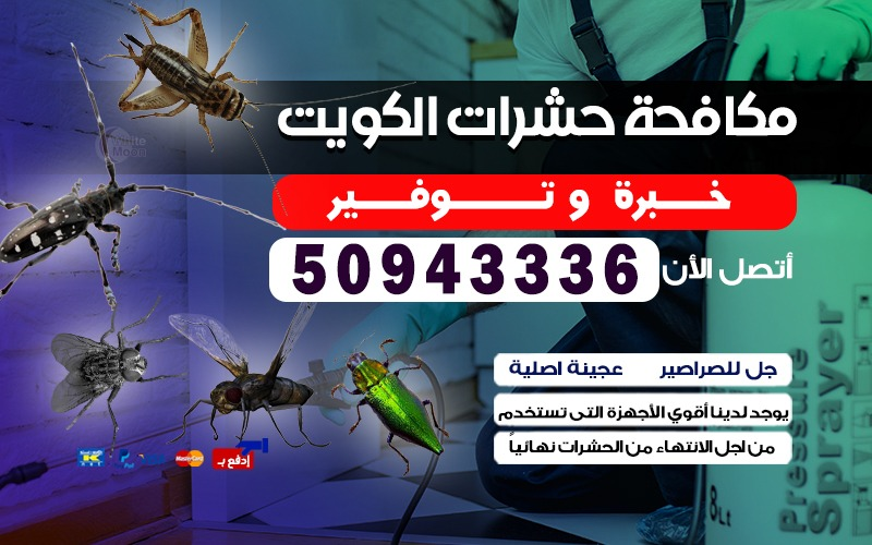 مكافحة حشرات ابو الحصاني 50943336 بالكويت