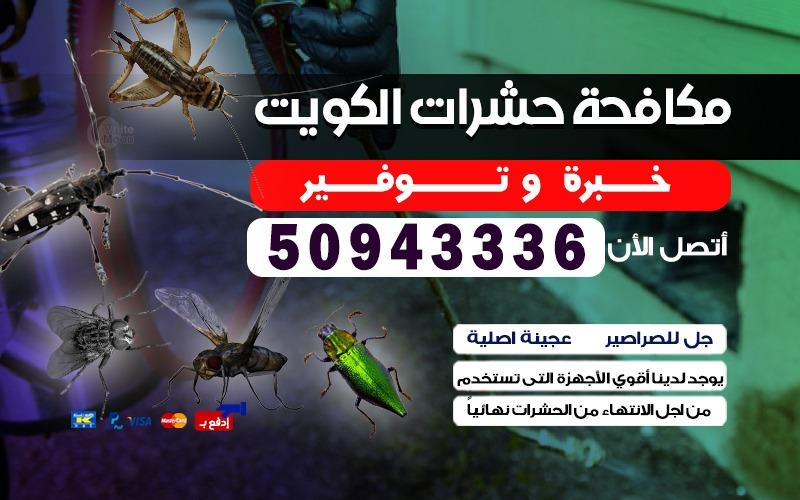 مكافحة حشرات ضاحية الشهداء 50943336 بالكويت