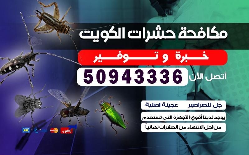 مكافحة حشرات حولي بالكويت 50943336 مكافحة قوارض