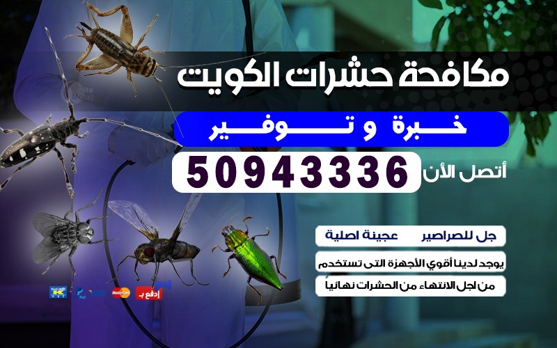 مكافحة حشرات ضاحية الصديق 50943336 بالكويت