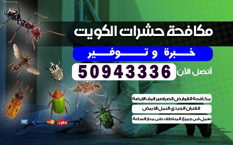 مكافحة حشرات المهبوله 50943336 بالكويت