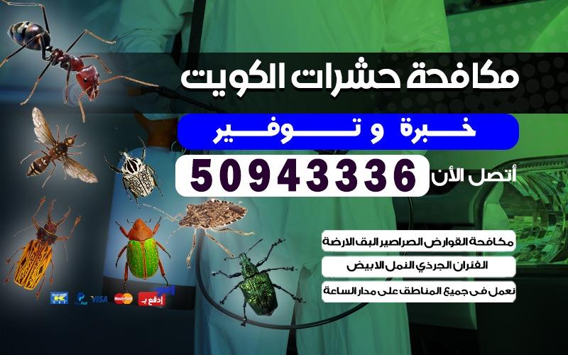 مكافحة حشرات الأحمدي 50943336 الكويت