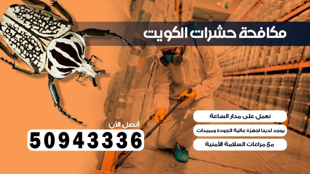 ابادة حشرات المسايل الكويت