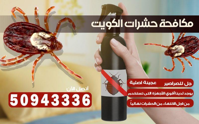 ابادة حشرات الأندلس بالكويت