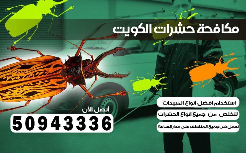 ابادة حشرات الشويخ الكويت