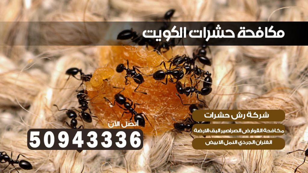 شركة حشرات الشويخ