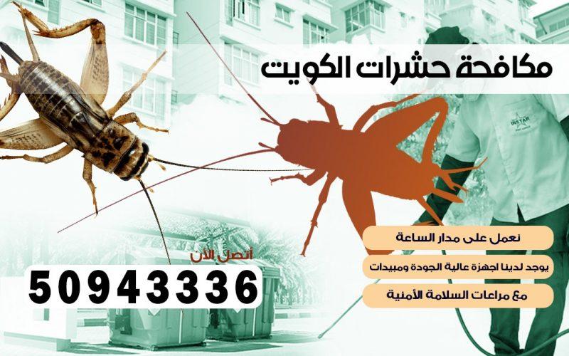 ابادة حشرات العمريه بالكويت