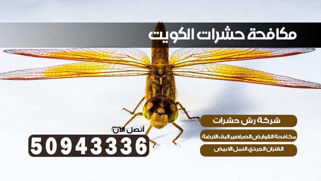 ابادة حشرات الفروانيه بالكويت