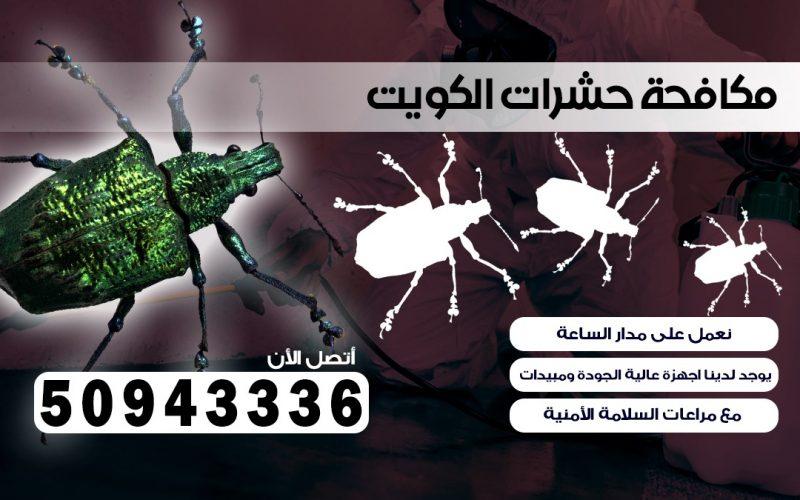 ابادة حشرات ابو حليفه بالكويت