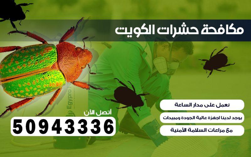 مكافحة قوارض الجابرية الكويت