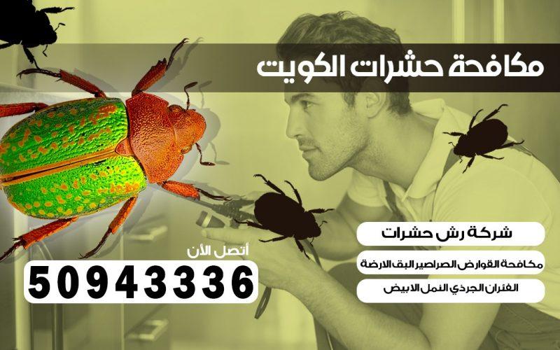 مكافحت الحشرات الروضة