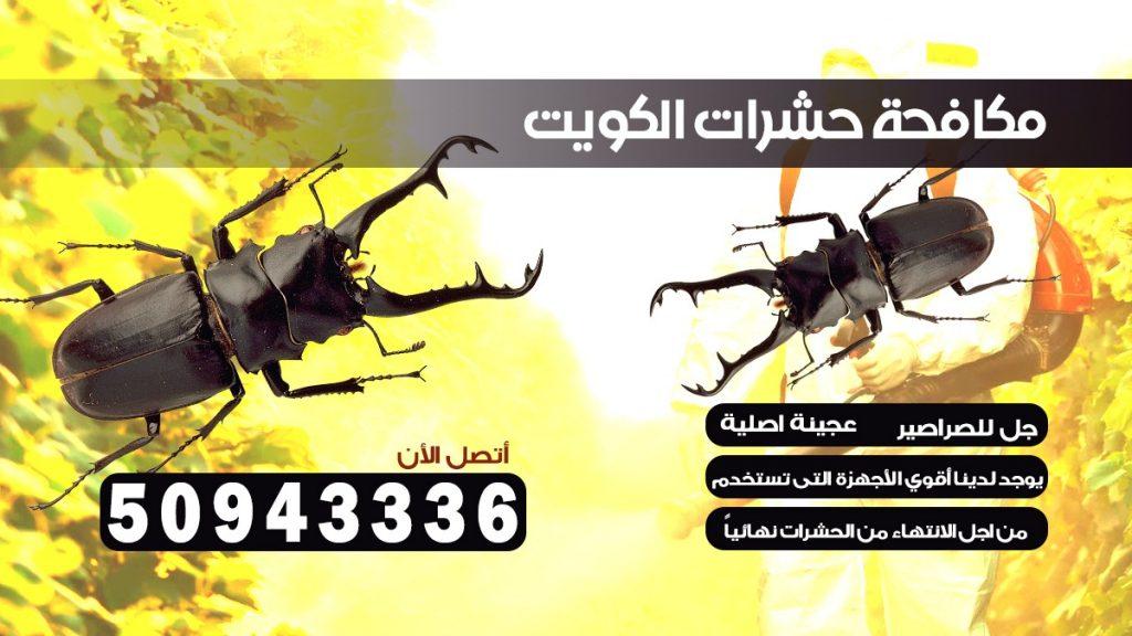مكافحة بق الفراش مبارك الكبير الكويت