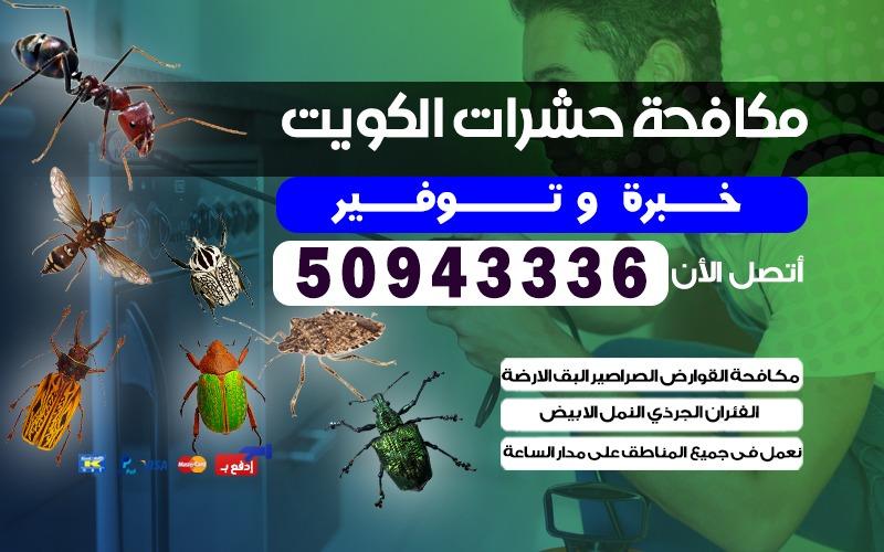 مكافحة الحشرات المخيمات 50943336 الكويت