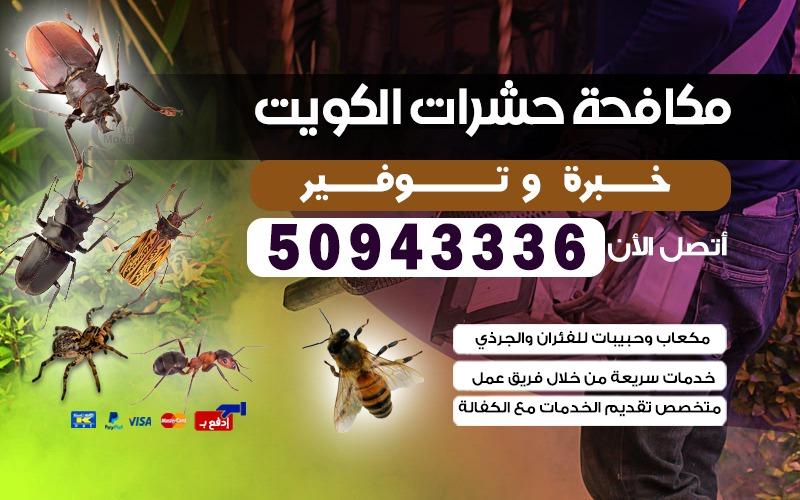 مكافحة الحشرات شاليهات بنيدر 50943336 الكويت