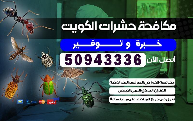 مكافحة الحشرات شاليهات الجليعه 50943336 الكويت