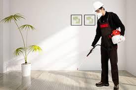 شركة مكافحة حشرات بالكويت 51516050 رش حشرات بدون رائحة