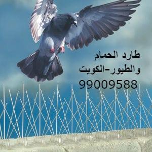 طارد الطيور الكويت 99009588 مانع الطيور تركيب شبك طارد الطيور من الدرايش الشبابيك