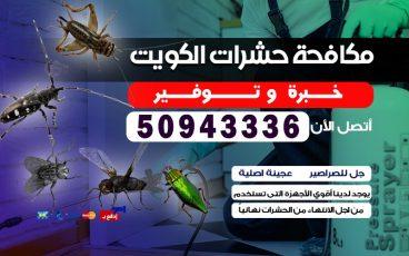هل تعانى من وجود الحشرات