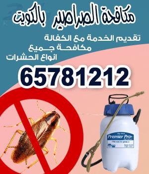 مكافحة حشرات السالميه 50943336 عقود رش حشرات سنوية