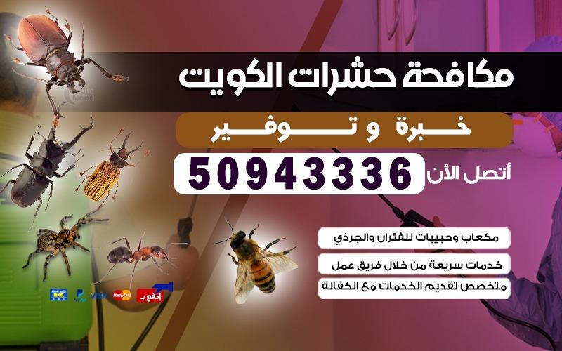 مكافحة حشرات عبدالله المبارك 50943336 بالكويت
